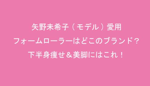 矢野未希子(モデル)愛用のフォームローラー(ストレッチポール)はどこのブランド?下半身痩せ&美脚にはこれ!