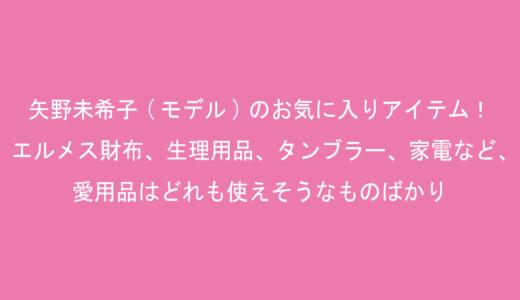 矢野未希子(モデル)のお気に入りアイテム!エルメス財布、生理用品、タンブラー、家電など、愛用品はどれも使えそうなものばかり